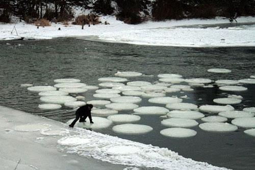 Ice Circles - Bulatan Es - 10 (sepuluh) Fenomena Alam Yang Sangat Langka Dan Jarang Terjadi - www.simbya.blogspot.com